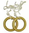 Кольца гимнастические для ДСК (дерево, пластик)